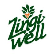 Zingi Well