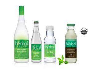 Ayala's Herbal Tea
