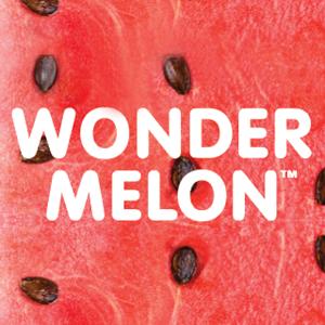 Wonder Melon