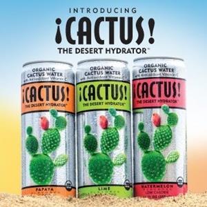 Cactus!
