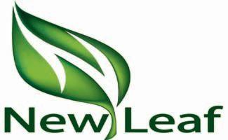 New Leaf Blue Tea