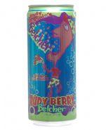 Rudy Begonia's Belcher: belcher-rudy-berry.jpg