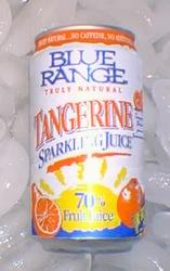 Sparkling Tangerine Juice