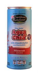 Caribbean Rainforst Agua de Chia: Caribbean Hib Front