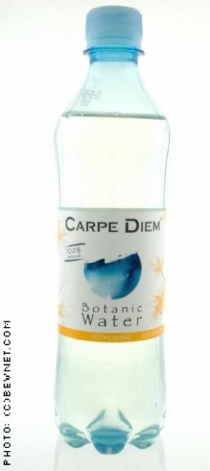 Carpe Diem: vitalizingwater.jpg