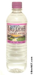 Chippewa Springs Bottled Water