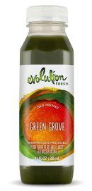 Evolution Fresh: GreenGroove copy