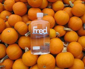 Fred: Pumpkins!!!
