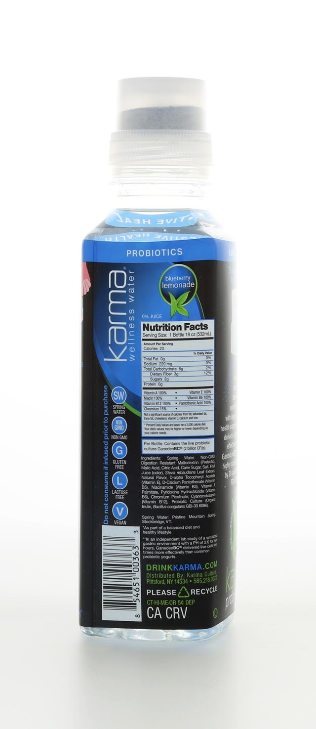 Karma Wellness Water: KarmaWellnessWater BlueBerryLemonade Back