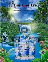 L3 Mountain Spring Water