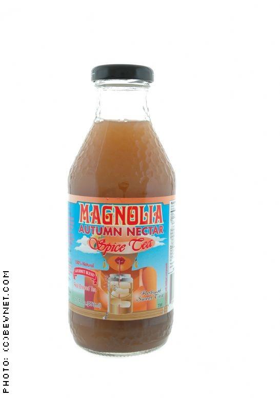 Magnolia Spice Teas: autumnspicetea.jpg