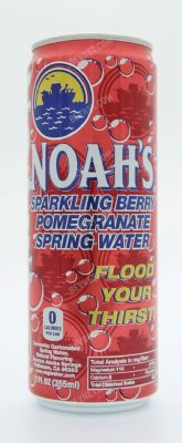 Sparkling Blueberry Pomegranate Spring Water