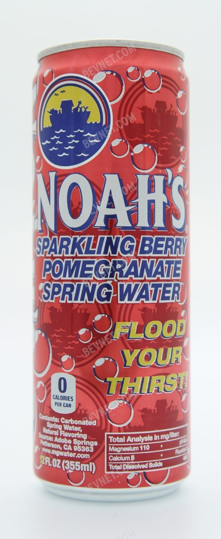 Noah's Water: