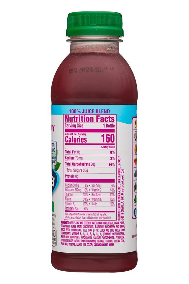 Odwalla: Odwalla-15oz-Juice-MintToBerry-Facts