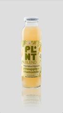 HempInfused-PineappleChamomile-Front