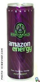 Amazon Energy - 2008