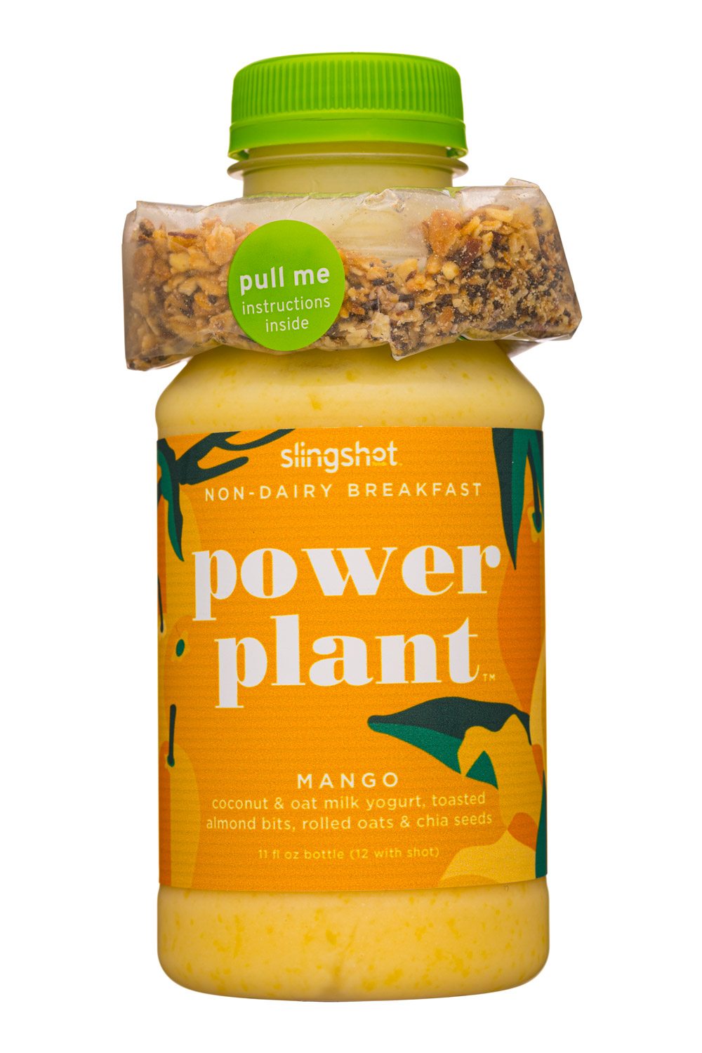 Power Plant: Mango
