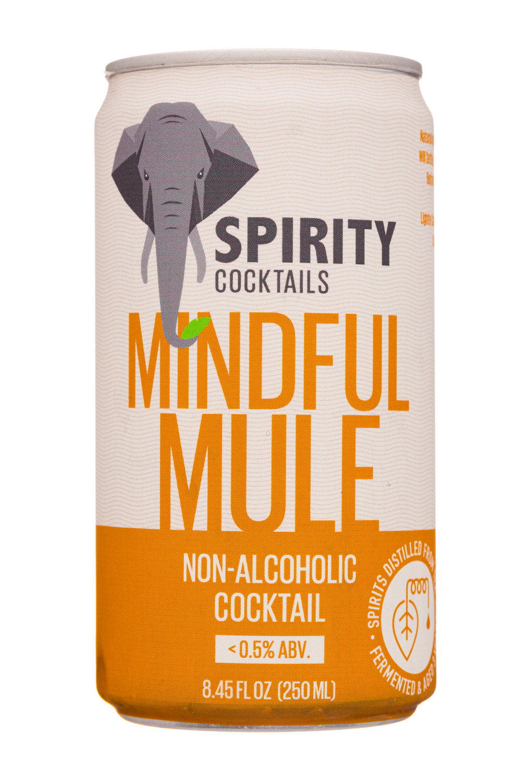 Mindful Mule
