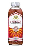 GTs-Synergy-16oz-CherryChia-Front