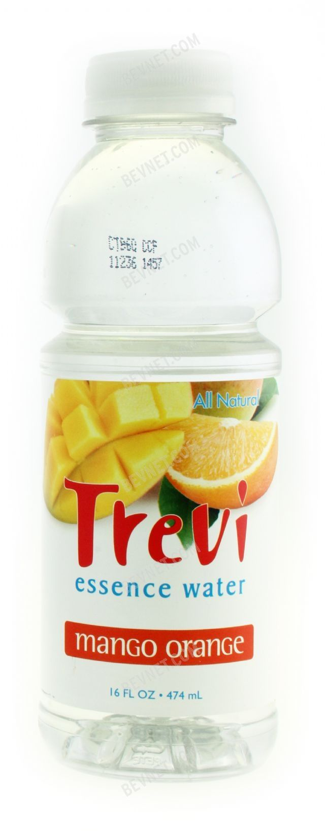 Trevi Essence Water: