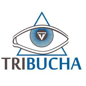 Tribucha