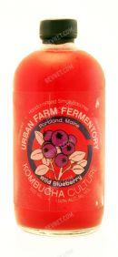 Urban Farm Fermentory Kombucha: