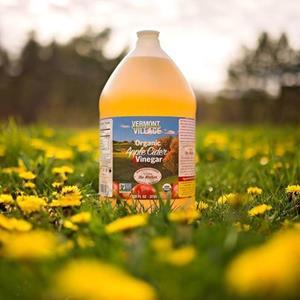 Vermont Village Sipping Vinegar